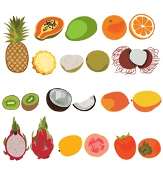 Tropic fruit isolated set flat style set of vector