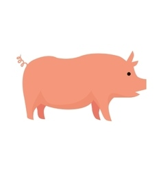 Pig Flat Design on White vector image vector image