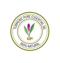 Turmeric essential oil label aromatic plant vector