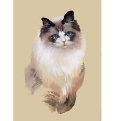 Watercolor portrait of cat vector image