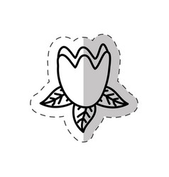 tulip flower cut line vector image