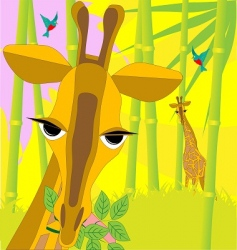 giraffe with branch vector image