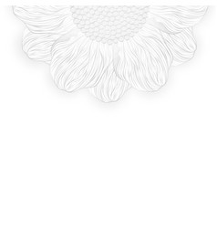 Abstract petal floral monochrome flower lined art vector