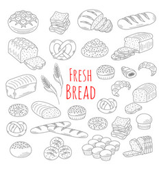Bakery fresh bread collection doodle style vector