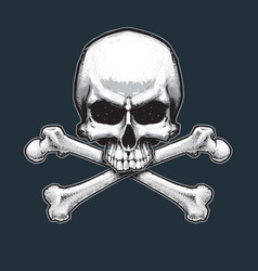 Pirates jawless skull and bones vector