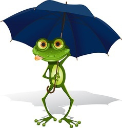 frog and umbrella vector image