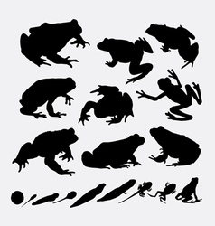 Frog and metamorphose silhouettes vector