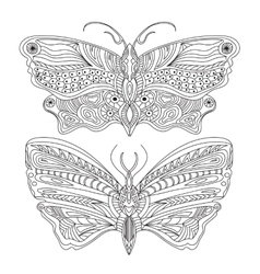 Butterfly - - Black and white vector image vector image