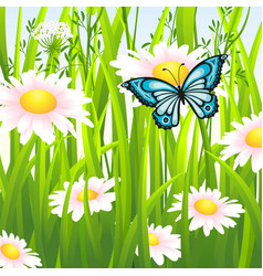 Flower meadow in summer with butterfly vector