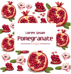 pomegranate realistic background with place vector image vector image