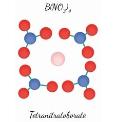 Tetranitratoborate BN4O12 molecule vector image vector image