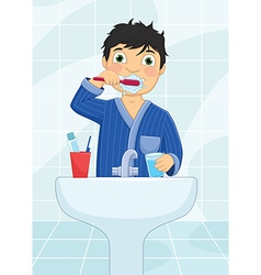 Boy Brushing Teeth vector image