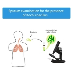 Sputum examination world tuberculosis day vector