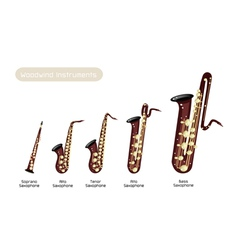 Different kind of musical saxophone vector