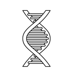 Dna strand icon outline style vector
