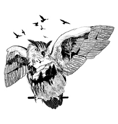 Hand drawn owl for your design wildlife concept vector