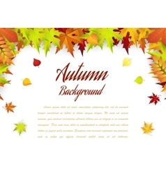 Autumn frame with falling maple leaves vector