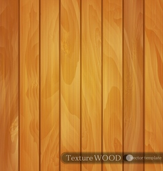 Wood background- texture of light brown wooden vector