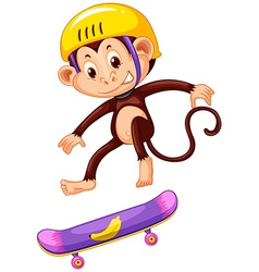 Monkey with helmet playing skateboard vector image
