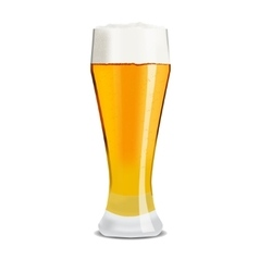 Realistic glass of beer vector