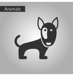 Black and white style icon dog pitbull vector
