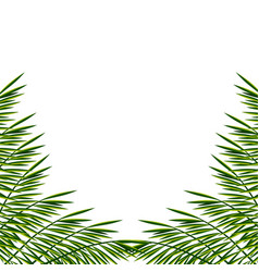 Bunner with palm leaves exotic tropical poster vector