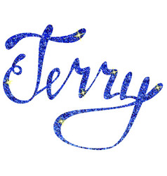 Terry name lettering tinsels vector