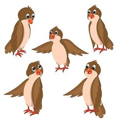 Brown Birds Set vector image vector image