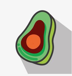 Delicious avocado tasty fruit icon vector