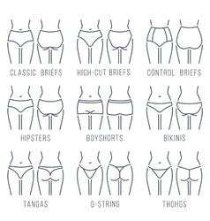 Female underwear panties types thing line vector image vector image