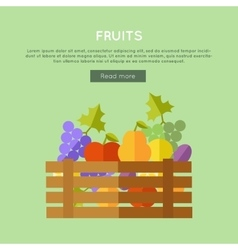 Fruits Web Banner in Flat Design vector image