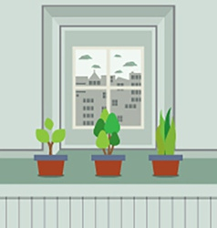 Set of pot plants on windowsill vector