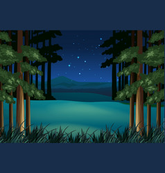 Forest scene at night with stars vector