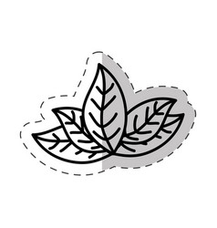 Leaves plant natural cut line vector