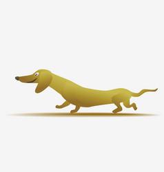 funny yellow cartoon dachshund vector image