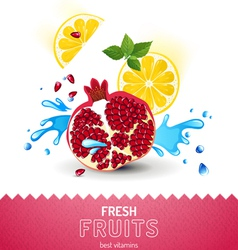 Bright fruit background vector