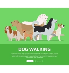 Dog Walking Concept Flat Style Web Banner vector image vector image