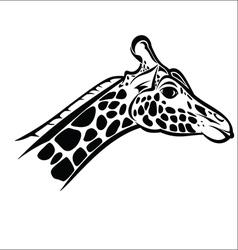 Giraffe head 2 vector image vector image