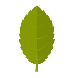 Green plum leaf icon isolated vector