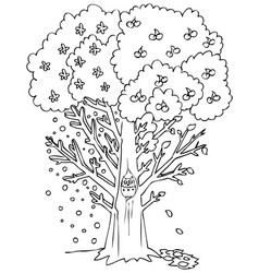 Season coloring fruit tree vector