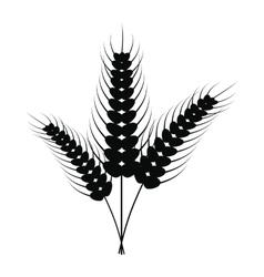 Three stalks of ripe barley icon vector image vector image
