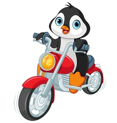 Penguin motorcyclist vector