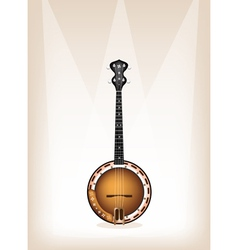 A beautiful banjo on brown stage background vector