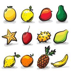 ExoticFruits vector image
