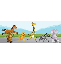 Wild animals running in race vector