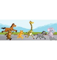 Wild animals running in race vector image