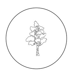 Birch tree icon in outline style isolated on white vector