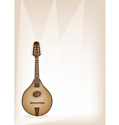 A beautiful antique mandolin on brown stage vector