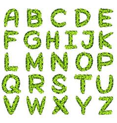 alphabet design in green leaves vector image