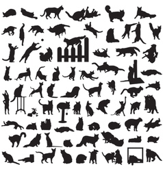 different set of silhouettes of cats vector image